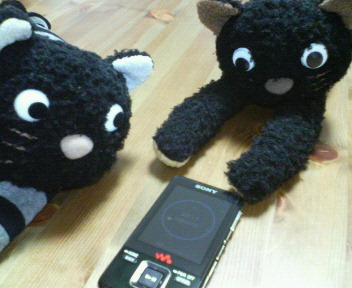 Walkman_and_cats_2